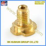 O CNC do fabricante do OEM que gira e que mmói parte (HS-TP-010)