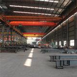 Grande Pesado Span Construções prefabricadas House Edifício de aço (TL-WS)