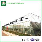 Invernadero elegante del vidrio del Multi-Palmo de Multipurposeand