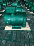2kw에서 20kw에 St 시리즈 단일 위상 a.c. 발전기