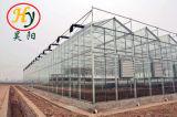 花のための農業のガラス温室