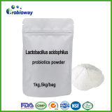 乳酸桿菌のAcidophilus Probioticsのプライベートラベルの栄養の補足Nutraceuticals