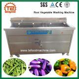 ルート野菜の洗濯機