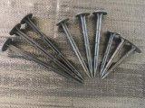 プラスチック正方形止め釘が付いている固定地被植物