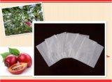 Водонепроницаемый против насекомых фрукты оберточную бумагу пакет защиты Apple манго виноград растет бумажных мешков для пыли