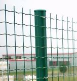 PVC загородки ячеистой сети евро фабрики Anping покрыл горячий DIP гальванизированный дешево