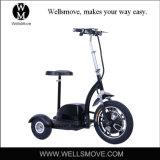 道の電気Zappy 3プロ屈曲3の車輪のElektrischer Trikeのスクーターを離れて
