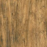 60X60cm azulejos de madera clásicos del suelo y de la pared de la porcelana de los azulejos