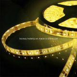 Gel 9.6W/M Drop IP65 avec du ruban adhésif 3M SMD3528 Bande LED Flexible
