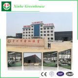 Casa verde de aluminio del superventas de China para el jardín del chalet
