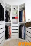 고품질 현대 래커에 의하여 주문을 받아서 만들어지는 옷장 (BY-W-110)