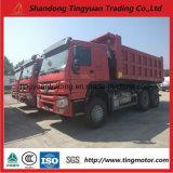 40 de Kipwagen van de Vrachtwagen van de Stortplaats van de ton HOWO met Dieselmotor 336HP voor Afrika