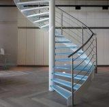 Escadaria do aço inoxidável de Europa com trilhos de vidro