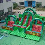PVC 방수포 팽창식 아이들 만화 다채로운 쾌활한 도약자 성곽