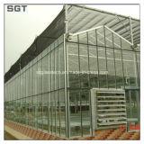 4mmの緩和されたガラスの低い鉄ガラスは園芸のために拡散した