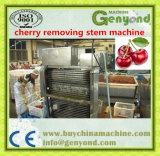 機械、チェリーまたはフルーツの処理機械を除去するすばらしいチェリーの茎