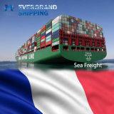 De concurrerende Overzeese Vracht van de Oceaan & van China aan Frankrijk/Parijs/Le Havre/Marseille