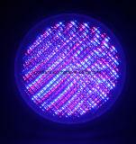 RGB LED 수영장 빛 12V 연못 점화