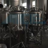 Stainless Steel Home Brew fermenter with concerns, thermometer (ACE FJG qs)