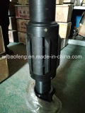 "Bomba de cavidade progressiva (PCP) Specialized 5 1/2"" Anchor"