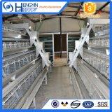 Цыпленок фермы оборудование птицы каркаса слоя
