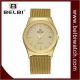 De Dames van Belbi vormen Appel van de van de Bedrijfs kalender Horloge van de Gesp van Horloges het Magnetische