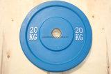 Strumentazione libera di forma fisica del peso di Dumbbell con lo SGS (usnv81960)