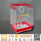 Rahmen und Aviary für Vögel