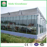 Serra di vetro commerciale della portata di Muti per l'ortaggio ed i fiori