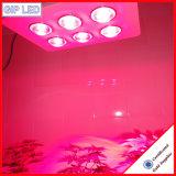 La Chine Fabricant LED 756W COB croître pour feux de plantes médicinales