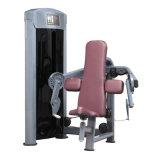Ginnastica delle macchine/portello di addestramento di concentrazione della pressa del bicipite/strumentazione relativa alla ginnastica