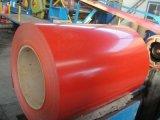 Vorgestrichene galvanisierte Stahlsekundär-PPGI Ringe des ring-PPGI