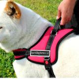 Vielzweckservice, der Sport-Berufsausbildung-gehende Nylonhundeverdrahtung zieht