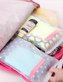 Bolso de empaquetado helado alta calidad de la ropa del OEM EVA