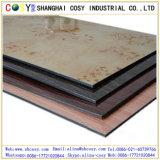 Strato composito di alluminio impermeabile del comitato/ASP per il rivestimento della parete