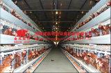 Matériel bon marché d'aviculture de cage de poulet d'usine d'approvisionnement de poulet de cage directe automatique de couche