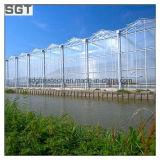 4mm 5mm Super White/Ultra Clear Tempered Glass per Greenhouse