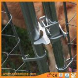 屋外の電流を通されたチェーン・リンク犬の実行の犬小屋