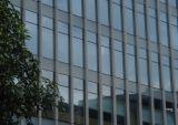 Mur rideau en aluminium pour le résidentiel (CL-C1008)