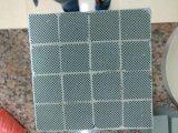 La macropartícula diesel del panal filtra (DPF) el monolito de cerámica