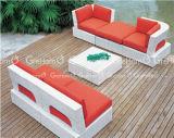 高貴な家具のバルコニーのソファーセット