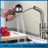 En acier inoxydable 304 robinets de tirer vers le bas de l'enregistrement de l'eau du robinet de cuisine muet