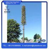 カムフラージュのココナッツ松の木コミュニケーションMonopoleタワー