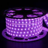 IP68 imprägniern Streifen -40~50degree GeschäftTemp RGB-LED mit speziellem TPU materiellem Deckel