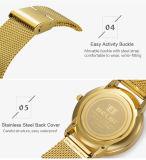 Belbi einfaches Geschäfts-wasserdichte Stahlquarz-Batterie-Armbanduhr für ultradünnen Stahl des Mann-Geschenk-Farben-Schwarz-Goldsilber-240mm