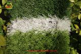 Fabrik-direkt Fußball-künstliches Gras von China mit gutem Preis