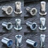 Auto/Aviation/Railway를 위한 스테인리스 Steel 또는 Carbon Steel Rivet Nut