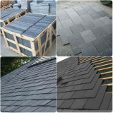 측정된 Marble 또는 Granite/Tumbled/Slate Roof/Travertine/Limestone/Onyx/Sandstone/Basalt /Mosaic/Step/Natural Stone Slab와 Tiles