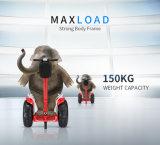 4000W 20km/H 2 바퀴 지능적인 각자 균형 전기 스쿠터