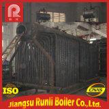 Chaudière à vapeur allumée de charbon industriel de série de Dzl à vendre